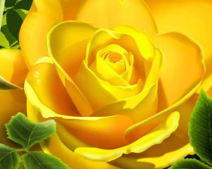 rosa_amarilla_3d